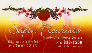 Sapin Fleuriste (proprio